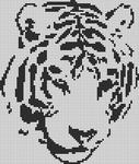 Alpha pattern #13869