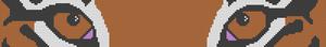 Alpha pattern #45277