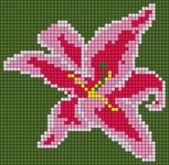 Alpha pattern #61022