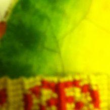Pattern #2475 Photo