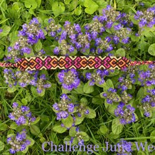 Pattern #37116 Photo