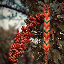 Pattern #29451 Photo