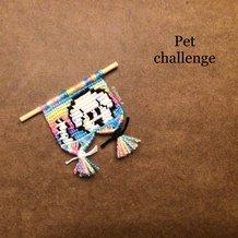 Pattern #52157 Photo