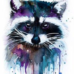 Racoon's avatar