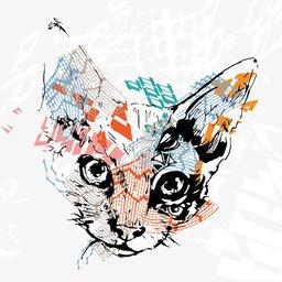 sbhnm's avatar