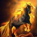 sunhorse6