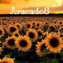 Avacado8