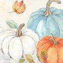 Pumpkinnn