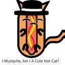 Cats4lyfe