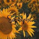 sophiphi