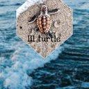 Lil_turtle