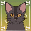 Cat-lady