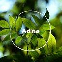 adinsbooz