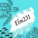 elm231