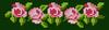 Alpha pattern #42353 variation #57894