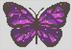 Alpha pattern #44039 variation #63165