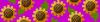 Alpha pattern #58520 variation #103766