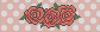 Alpha pattern #11776 variation #117453
