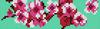 Alpha pattern #10881 variation #128670