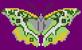 Alpha pattern #96105 variation #176261