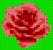 Alpha pattern #98045 variation #180759
