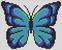 Alpha pattern #98083 variation #185082